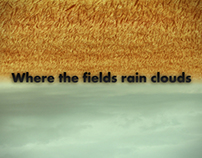 Where the fields rain clouds