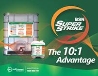 2013 BSN Sales Presentation