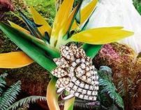JADORE Jewelery