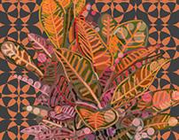 Croton No. 3