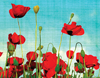 Universal Nightclub Poppy Light Wall Mural