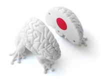Jumping Brain x Japan