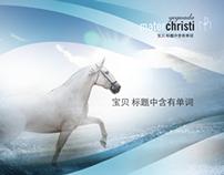 Mater Christi, Brochure