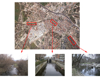 Analyzing the quality of an urban riparian forest