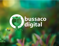 App design - Bussaco Digital