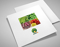 Square tri fold brochure design