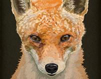 Mrs Fox
