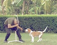"""Kit-Kat • ver. Dog Trainer • Youtube 60"""" • 2011"""