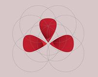 Colnago Logo Concept
