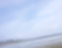 O Lago Avesso