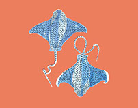 Bat Ray Pattern
