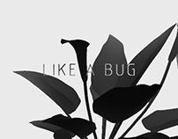 Like a bug.