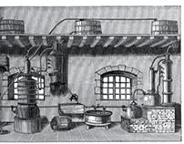 Gin Shop Revolt