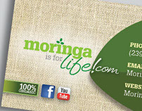 Brand Identity  /  Moringa Is For Life