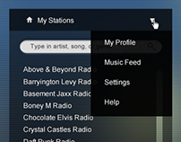Pandora Redesign: Echo