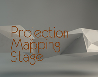 Mapping Stage