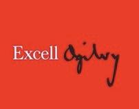 Casos de Exito - Excell Ogilvy