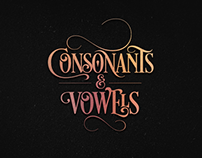 Consonants & Vowels