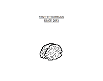Synthetic Brains