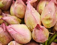 Dadar Flower Market Photowalk