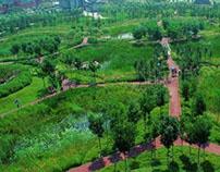 Tianjin Wetland Park; China - 天津侨园