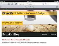 blog.bruxzir.com