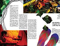 Publication Design- Tribune Magazine (Cover Stories)