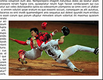 Baseball Article