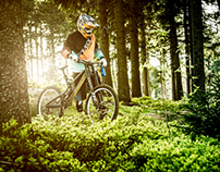 Downhill in the Bavarian Wood