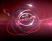 MioStadium Branding PITCH 2013