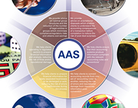 Accounting Advisory Services (AAS) diagram