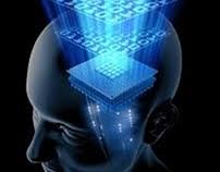 The Mind - La Mente