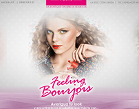 Bourjois web project