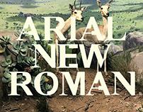 Arial New Roman