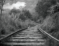 Sri Lanka : life around the railway track