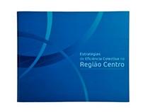 Estratégias de Eficiência Colectiva na Região Centro