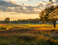 Golf Landscapes 2013