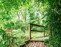 Clark Botanical Garden