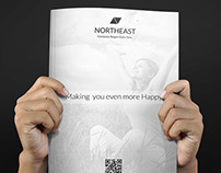 Northeast Flat style Business Brochure