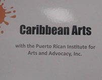 2013-Caribbean Arts Providers