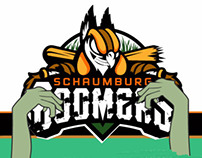 2014 Schaumburg Zombie promo video