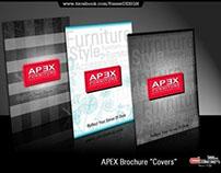 APEX Brochure & Banner .