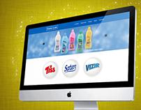 Company Web Presentation