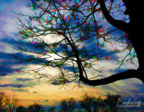 Digital Art/Painted Photography