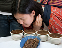 Fair Trade action in Nicaragua