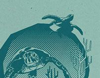 Turtles screenprint