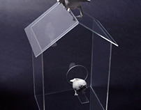 See-Through Birdhouse