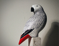 Grey Parrot Sculpture