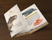 Broşür - Brochure