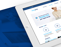 Online payment service - NowPay